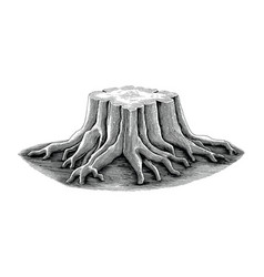 Stump black and white sketch engraving style vector