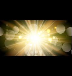 sunburst banner design vector image