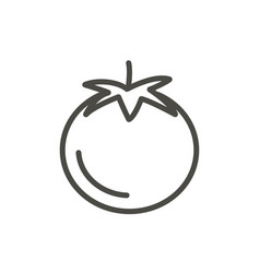 tomato icon outline wegetarian food line vector image