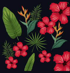 hibiscus leaf palm tropical wild vector image vector image