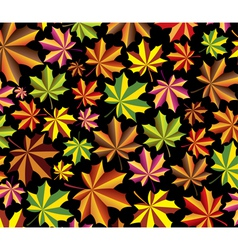 fall maple leaves vector image