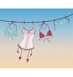 lingerie vector image