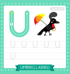 Letter u uppercase tracing practice worksheet vector