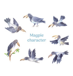 magpie character set poses grey cute bird vector image