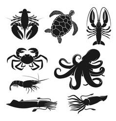 Seafood octopus turtle shrimp and crustaceans vector