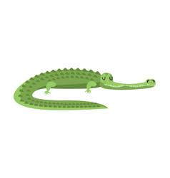 Sleeping crocodile alligator is asleep sleepy vector