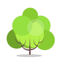 small green tree isolated on white close up vector image