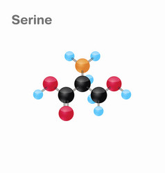 molecular omposition and structure of serine ser vector image