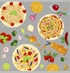 Template of italian macaroni vector
