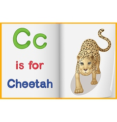 A picture of cheetah in book vector