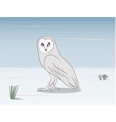 an owl stands in the nature vector image