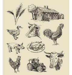 Farm and animals hand drawn vector