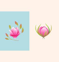 magnolia or rose one flower design composition vector image