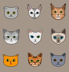 Nine cat breeds in cute cartoon style on beige vector