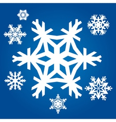 Set from original snowflakes vector image