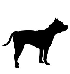 Shepherd dog silhouette on a white background vector