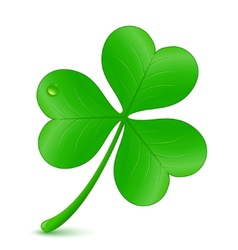 st patricks day symbol vector image