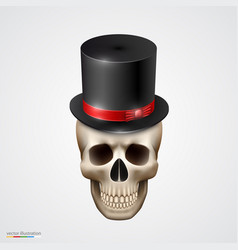 human skull isolated with hat vector image
