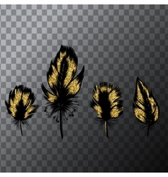 Hand drawn set of gold feathers Vintage vector image vector image