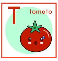 cartoon alphabet flashcard t is for tomato flat vector image vector image