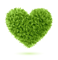 Heart symbol of green leaves vector image vector image
