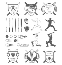 Set Softball Badges and Logos vector image