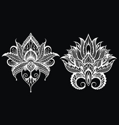 decorative lotuses vector image