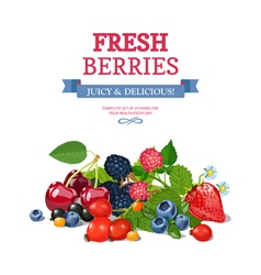 Fresh Berries Background Ad Background Poster vector