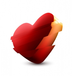 heart illustration vector image