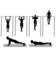 Physical exercise vector