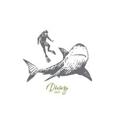 sea fauna shark swim underwater marine vector image