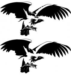 condor vector image vector image