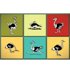 ostrich silhouettes set vector image