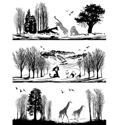 Animals bear giraffe leopard in different habitats vector