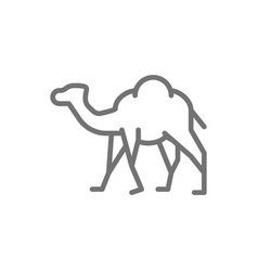 Camel caravan desert animal line icon vector