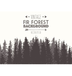Fir forest background drawn vector image vector image