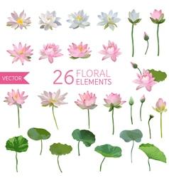 Vintage Waterlily Flowers in Watercolor Style Set vector image