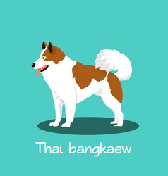 an depicting a cute thai bangkaew vector image