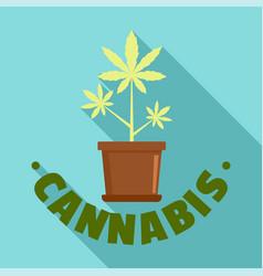 cannabis pot plant logo flat style vector image