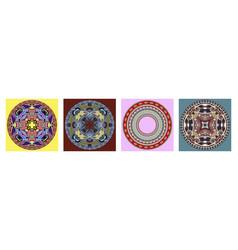 decorative design of circle dish template vector image