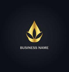 Droplet leaf gold logo vector