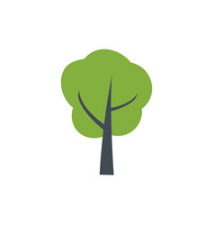 green tree icon forest symbol isolated on white vector image