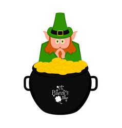 Irish elf in a golden coins pot vector