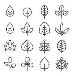leaf icons set on white background vector image
