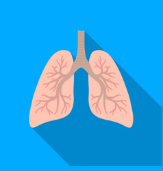 lungs icon in flat style isolated on white vector image