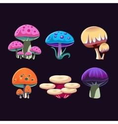 Fantastic Mushrooms Set vector image vector image