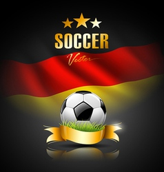 Football and flag of germany vector image vector image
