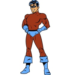 Masked Superhero With Arms Akimbo vector image