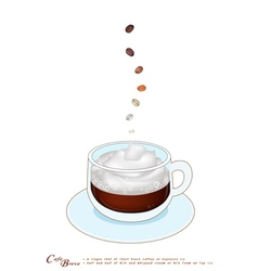 A Cup of Cafe Breve with Whipped Cream vector image