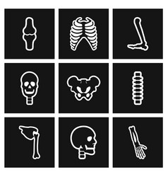 Assembly stylish black and white icons human bones vector